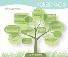 forest-facts-thumb
