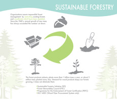 sustainable-forestry-thumb