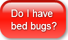 do-i-have-bed-bugs
