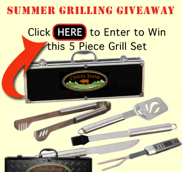 free-grill-set-for-summer-r