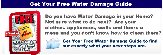 Free Water Damage Guide