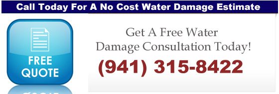 water-damage-free-quote-copy-copy