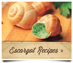 cta-escargot-recipes-1