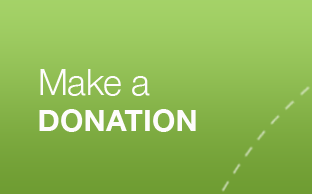 make-a-donation-cta