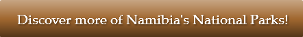 discover-more-of-namibiaaposs-national