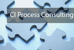 ci-process-consulting