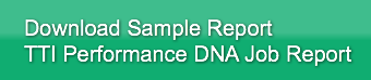 Download Sample ReportTTI Performance DN