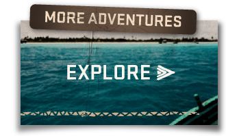 more-adventures-small