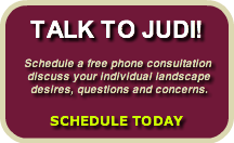 talk-to-judischedule-a-free-phone-cons