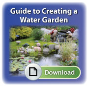 pond-guide-cta-feather
