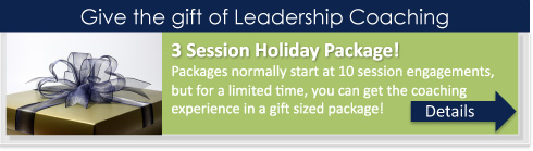 leadership_coaching_holiday_offer_blog
