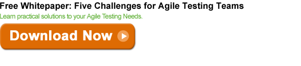 five-challenges-agile-wp-b